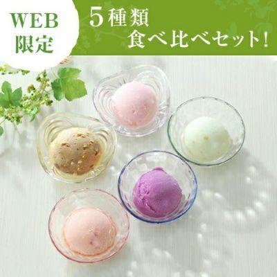 WEB限定 アイス 5種類食べ比べセット